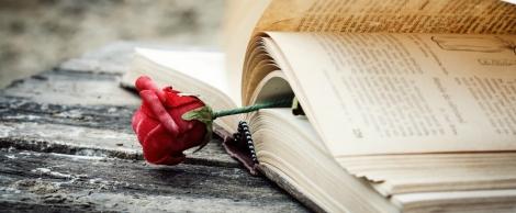 #romanceweek